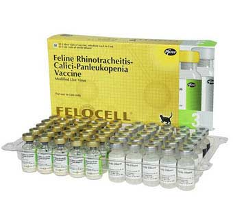 FELOCELL 3 1 ML X 25 DOSE