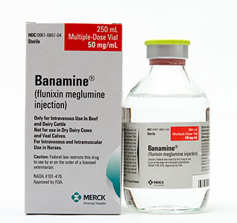 BANAMINE® SOLUTION 250 ML (RX)