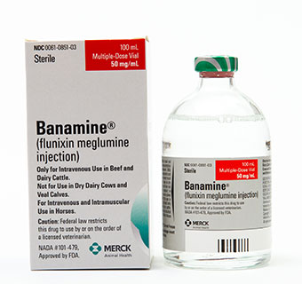 BANAMINE® SOLUTION 100 ML (RX)