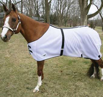 HORSE SENSE® FLY SHEET 81 IN WHITE