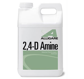 2 4-D AMINE  -  30 GALLONS