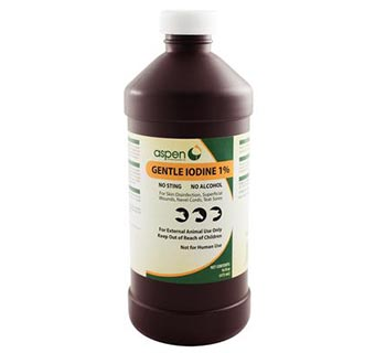 GENTLE IODINE 1% 16 OZ WITH SPRAYER NOZZLE