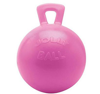 JOLLY BALL™ EQUINE - 10IN - BUBBLE GUM - EACH