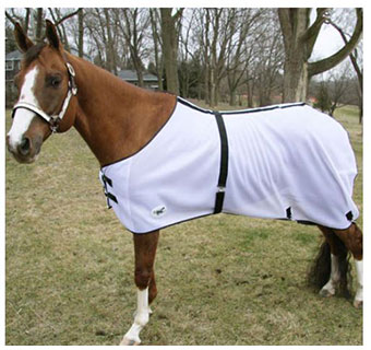 HORSE SENSE® FLY SHEET - WHITE - 78IN - EACH