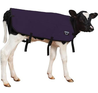 DOUBLE INSULATION CALF BLANKET BLUE MED 30 IN
