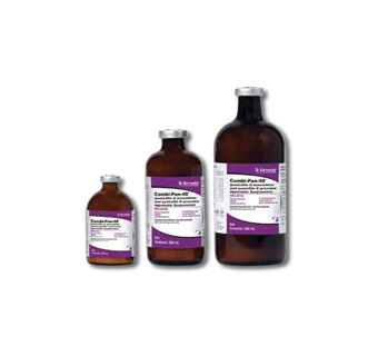 COMBI-PEN-48® PENICILLIN G BENZATHINE AND PENICILLIN G PROCAINE 100 ML