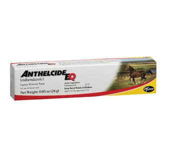 ANTHELCIDE® EQ PASTE 24 G SYRINGE 1/PKG