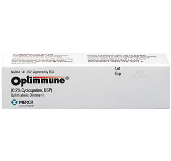OPTIMMUNE® OPHTHALMIC OINTMENT (0.2% CYCLOSPORINE) 6 X 3.5 GM RX