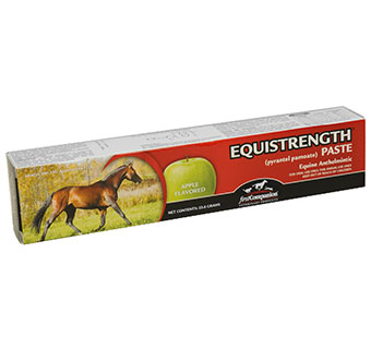 FIRST COMPANION EQUISTRENGTH® PASTE 23.6 G TUBE