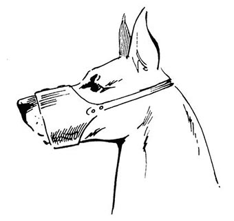 LEATHER CONE MUZZLES EXTRA LARGE