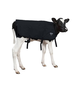 DOUBLE INSULATION CALF BLANKET BLACK L 34 IN