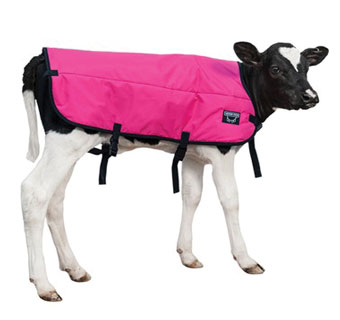 DOUBLE INSULATION CALF BLANKET PINK MED 30 IN