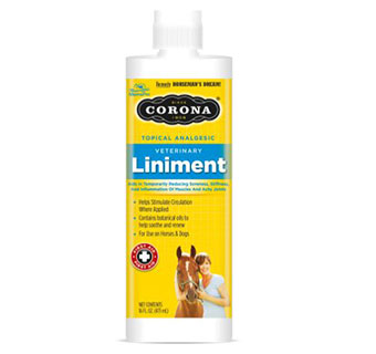 CORONA® LINIMENT - 16OZ - EACH