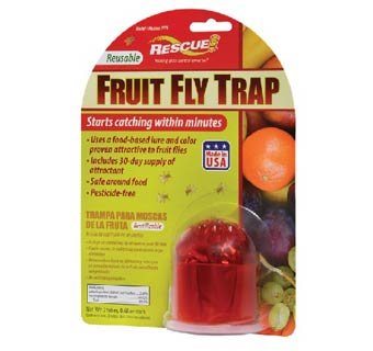 FRUIT FLY TRAP FLOOR DISPLAY 48 COUNT