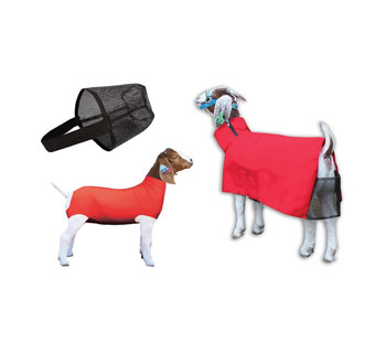 SHOW PRO GSBCM 3-IN-1 GOAT BUNDLE WITH COOL MESH BLANKET L RED